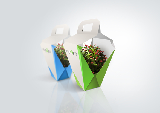 Environmental cardboard carrier for plants