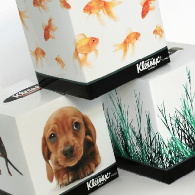 Cool branding design and packaging for Kleenex tissue boxes
