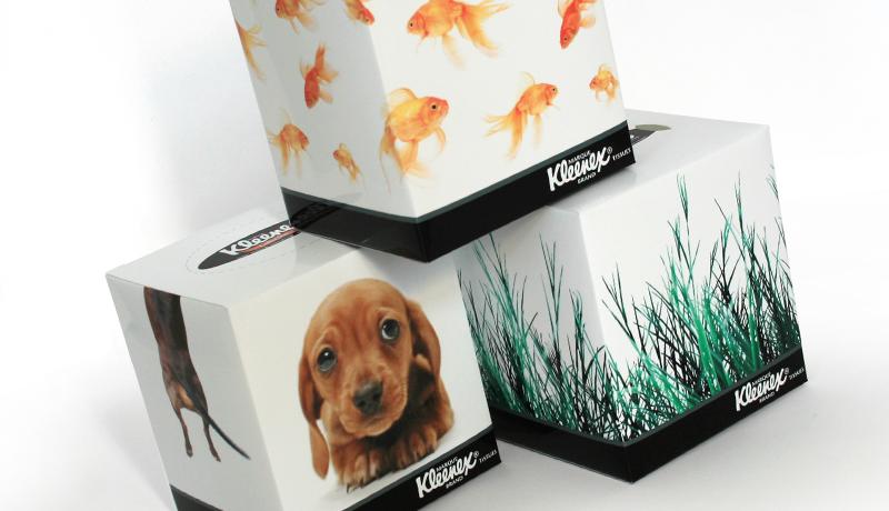 kleenex tissue box designs 1