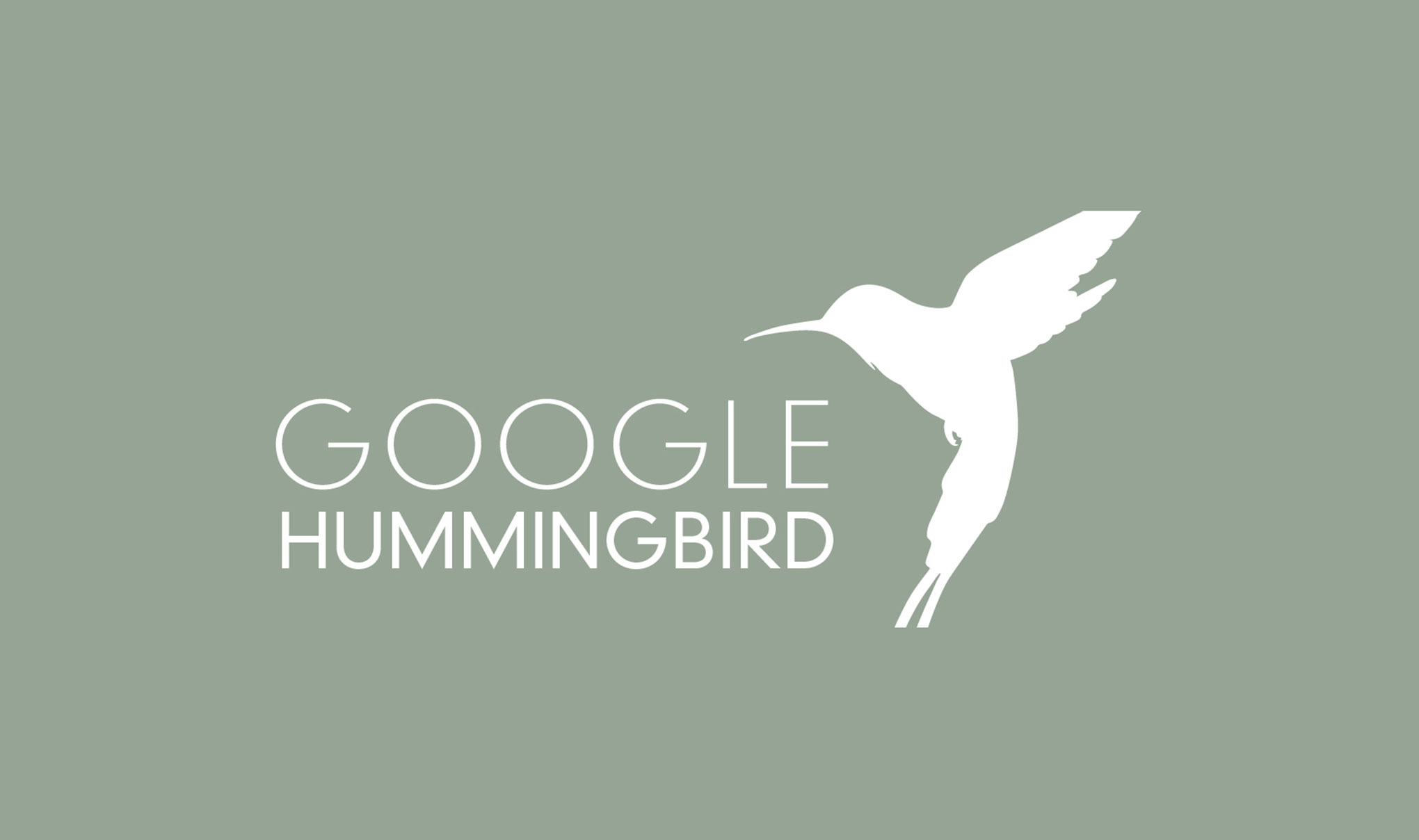 Featured image for google Hummingbird
