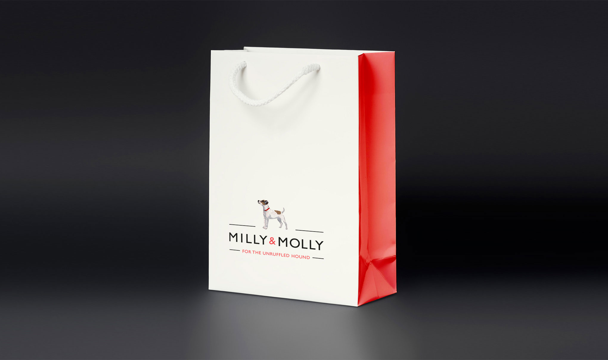 Pet packaging design. Image shows brand logo on paper bag with rope handle. Identity and packaging designed for the brand MILLY & MOLLY by design agency - Flipflop Design Ltd.