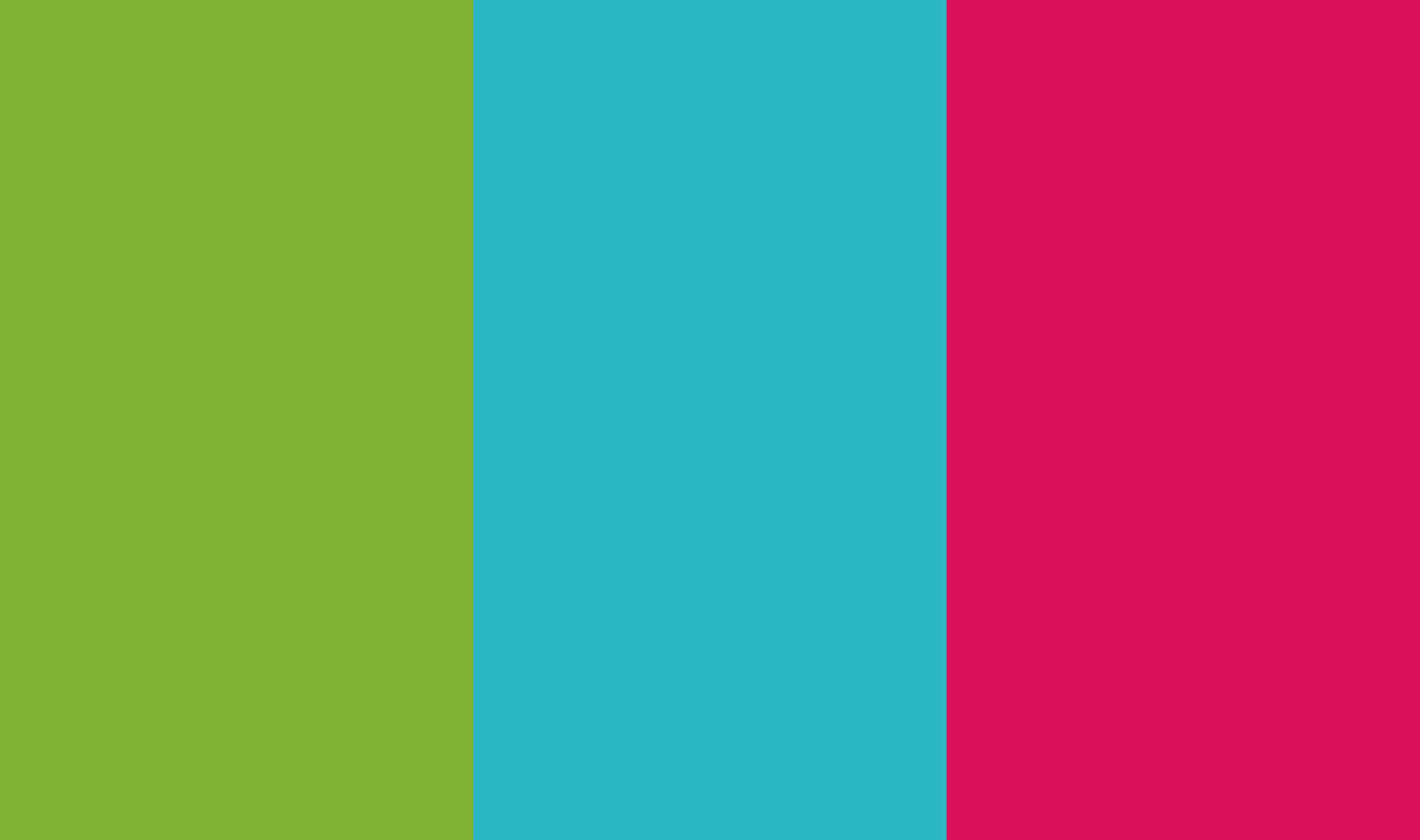 Prosmile Brand Colours 2040x1208 Creative Design Agency